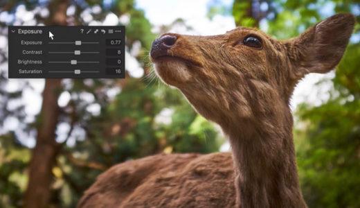 capture one raw photo editor interface explained
