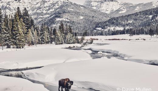 Why nature photographers need photo editing